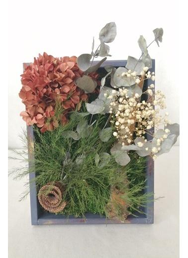 Kuru Çiçek Deposu Küçük Canlı Yosun Tablo Okaliptüslü (23 cm*30 cm) Renkli